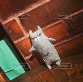 木製の表面の上に座って猫の写真・画像素材[825374]