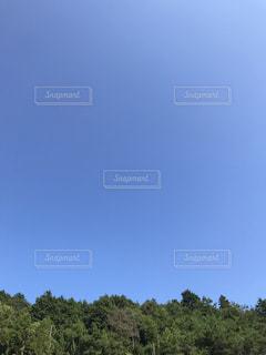 気持ち良い青空の写真・画像素材[829710]