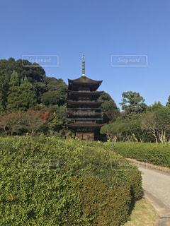 国宝  瑠璃光寺を少し遠目に緑の素晴らしさを一緒に写しました^_^公園としても素晴らしいパワースポットです^ ^の写真・画像素材[847767]