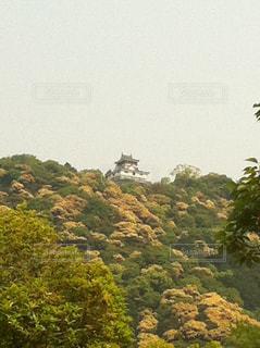 岩国城の写真・画像素材[856428]