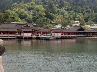厳島神社の写真・画像素材[856945]