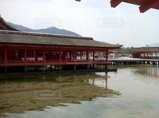 厳島神社の写真・画像素材[856949]