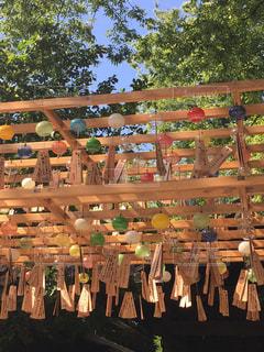 氷川神社の風鈴の写真・画像素材[827548]