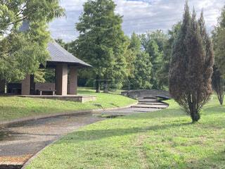 公園の中の小道の写真・画像素材[3775263]
