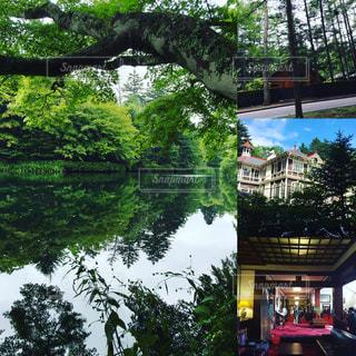 軽井沢 旅行  泉の写真・画像素材[827701]