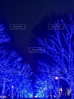 渋谷の青の洞窟の写真・画像素材[828484]