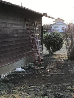 小屋に立て掛けられたハシゴの写真・画像素材[829610]