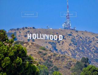 Hollywoodの写真・画像素材[829680]
