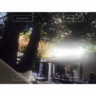 イビサのレストランの写真・画像素材[831765]