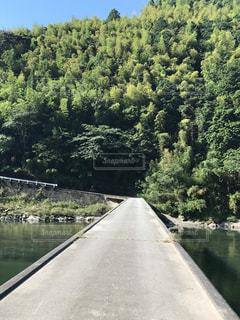 道の端に木の川の写真・画像素材[840503]