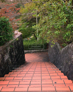 秘密の階段の写真・画像素材[858325]