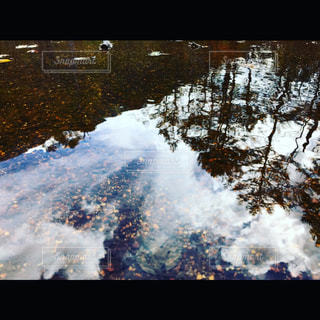 自然の写真・画像素材[830440]