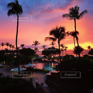 ハワイ等の夕暮れの写真・画像素材[1558771]