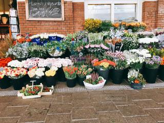 オランダ ホルーン駅の花屋さんの写真・画像素材[830880]