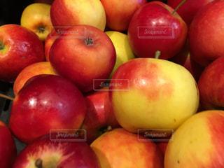 食べ物の写真・画像素材[830933]