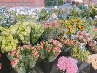 色とりどりの花のグループの写真・画像素材[1155338]
