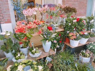 海外のお花屋さんの写真・画像素材[1155339]