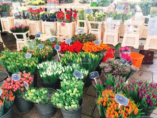 テーブルの上の花の花瓶の写真・画像素材[2120038]