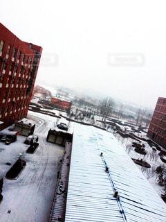 雪の写真・画像素材[835459]