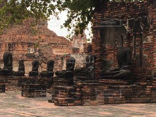 タイの写真・画像素材[831171]