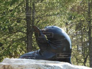 森の男の像の写真・画像素材[844516]