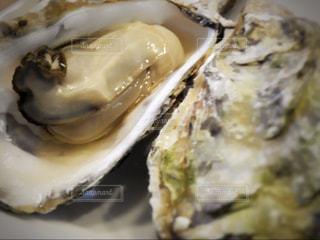 牡蠣の写真・画像素材[936751]