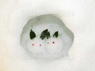 雪のうさぎ - No.993563
