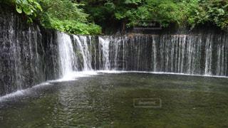 軽井沢の写真・画像素材[832115]