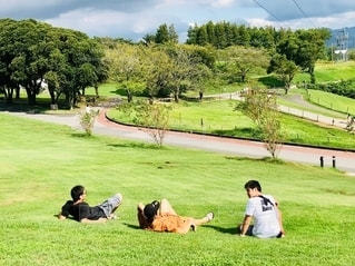 公園に座っている人々のグループの写真・画像素材[2501073]