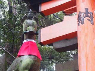 京都の写真・画像素材[836049]