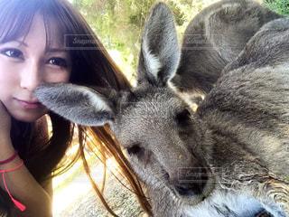 近くに動物を保持している女性のの写真・画像素材[1397333]