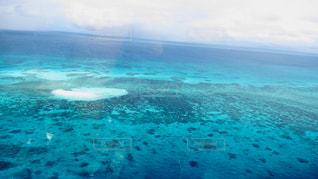 青と水体で泳ぐの写真・画像素材[1402469]