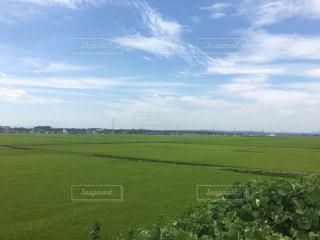 田舎風景の写真・画像素材[834237]