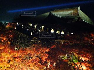 清水寺ライトアップの写真・画像素材[834623]