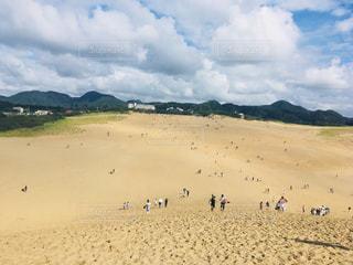 鳥取砂丘の写真・画像素材[858754]