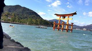厳島神社の写真・画像素材[884697]