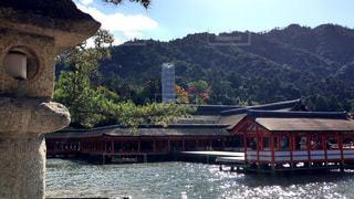 宮島の写真・画像素材[884805]