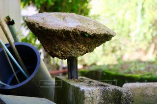 石の写真・画像素材[834577]