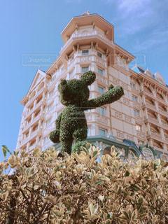 東京ディズニーランドホテルの冬支度の写真・画像素材[858459]
