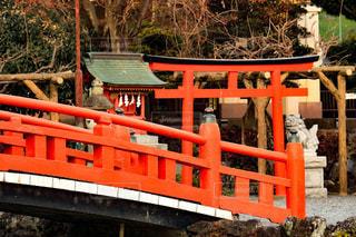 神社の写真・画像素材[921613]