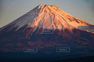 紅富士の写真・画像素材[958455]