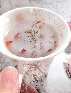 桜の写真・画像素材[982660]