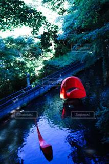 池の写真・画像素材[1290435]