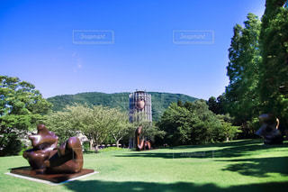 箱根の森美術館の写真・画像素材[1290492]