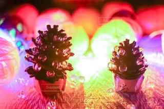 松ぼっくりのクリスマスツリーの写真・画像素材[1554660]