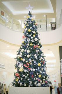 クリスマスツリーの写真・画像素材[1591049]