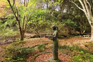 駿河平自然公園の像の写真・画像素材[1604613]