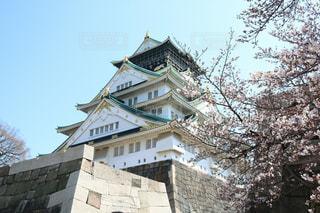 大阪城と桜の写真・画像素材[968148]
