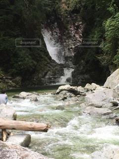 自然の写真・画像素材[835740]