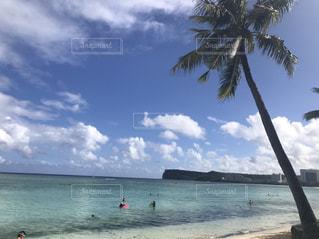 海の写真・画像素材[835773]